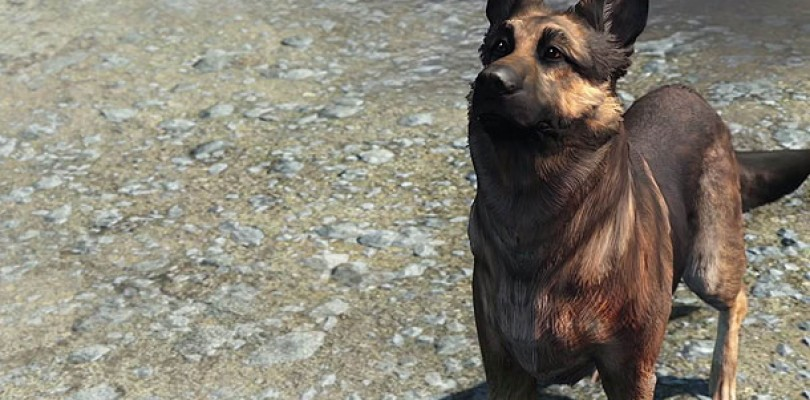 Fallout 4 Glitch Has Us Seeing Double