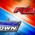 Could Smackdown VS Raw Games Return?